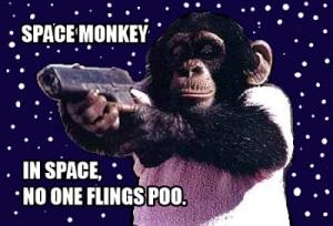 space monkey fyi